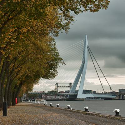 Herfstfoto Rotterdam