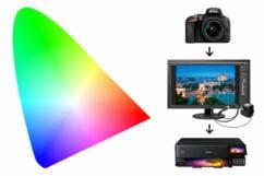 Kleurmanagement Workshop