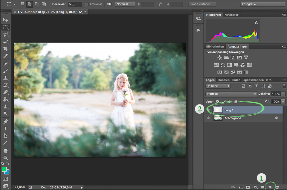 Basis Uitleg Adobe Photoshop - Maskers en Lagen