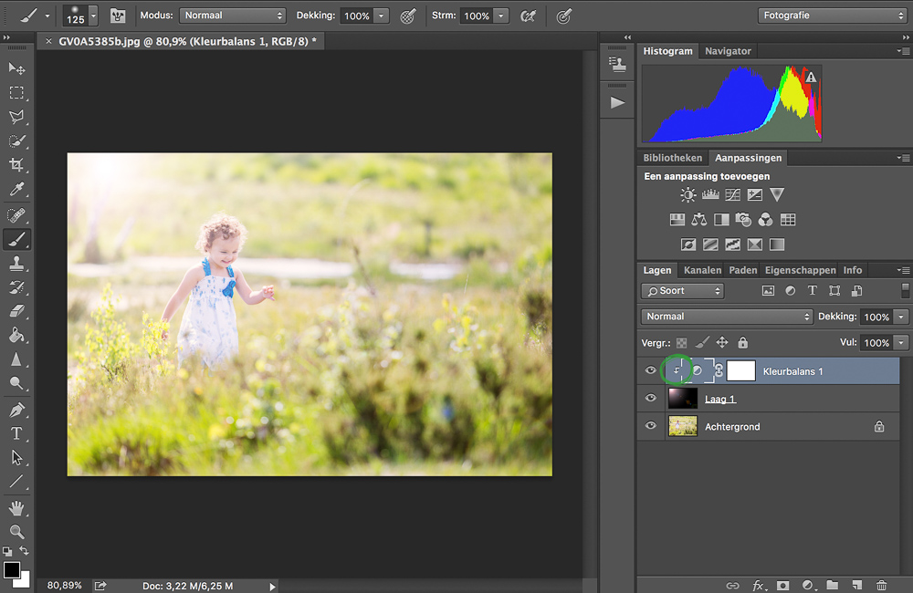Zon Filter in Adobe Photoshop