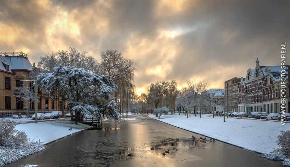 Mooiste Foto's van Rotterdam - Sneeuw op Noordsingel