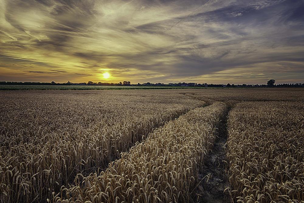Zonsondergang in Zeeland Fotograferen - Quirien Marijs