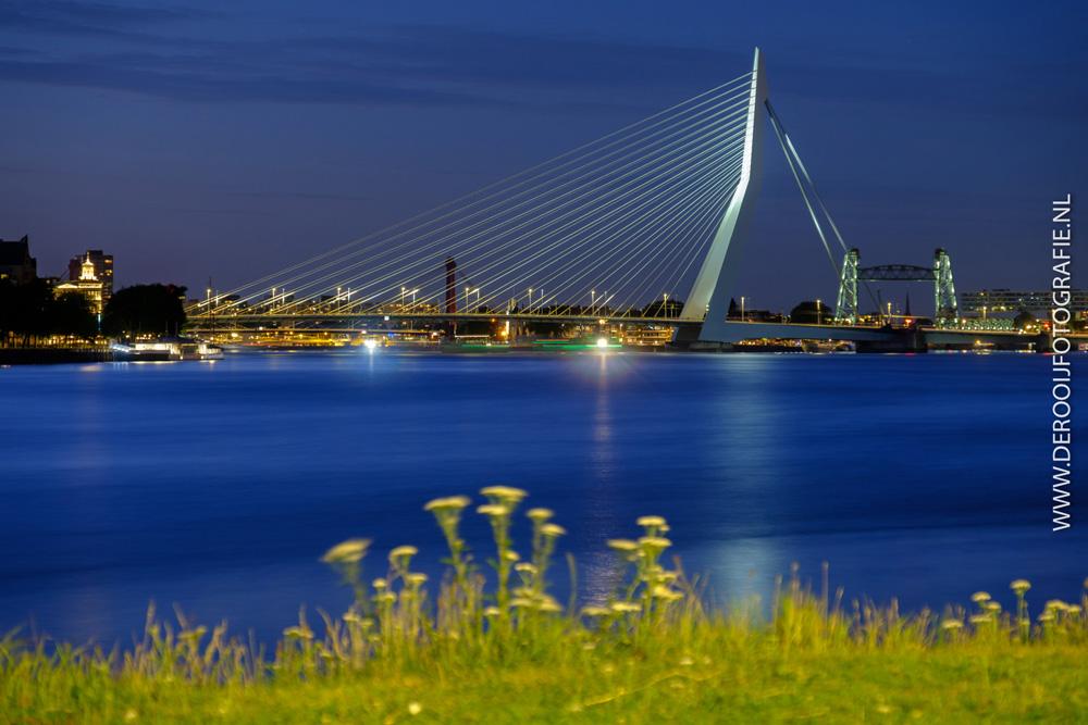 Mooiste avondfoto van de Erasmusbrug vanaf Katendrecht