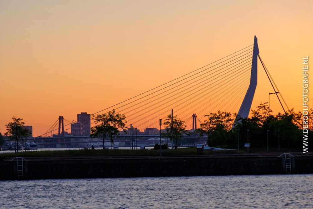 Mooiste zonsopkomst foto van de Erasmusbrug