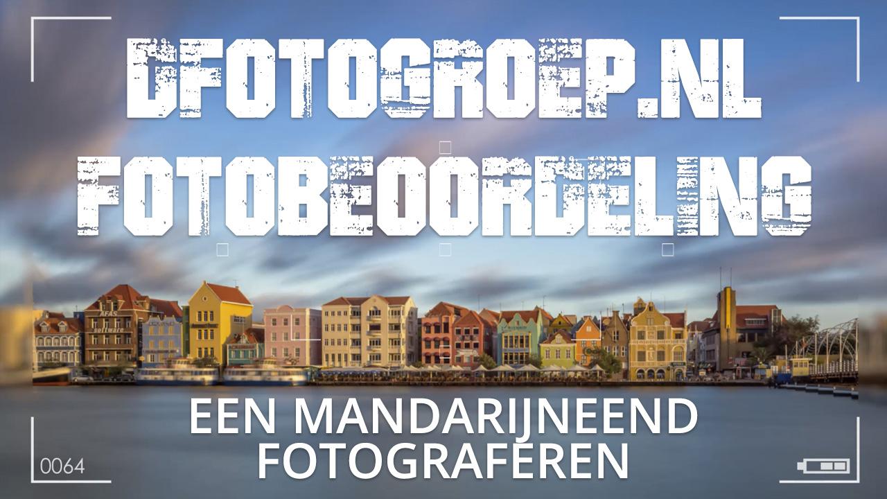 Dfotogroep.nl beoordeling 002, dierenfotografie, dieren fotograferen