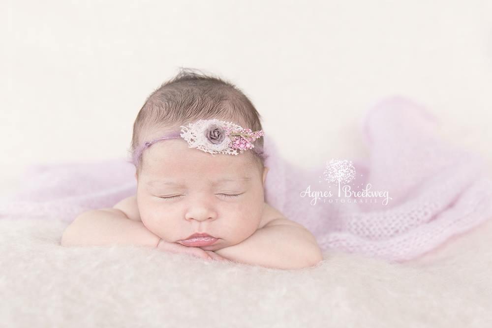 agnes breekweg fotografie newborn fotograaf