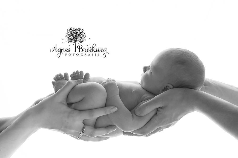 Newborn Fotografie - Interview Agnes Breekweg