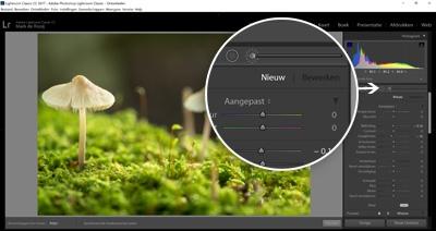 Cursus Adobe Lightroom - Ontwikkelen - Aanpassingspenseel