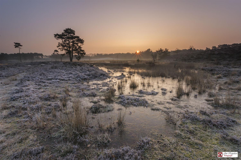 Overasseltse en Hatertse Vennen mooiste locatie voor landschapfotografie