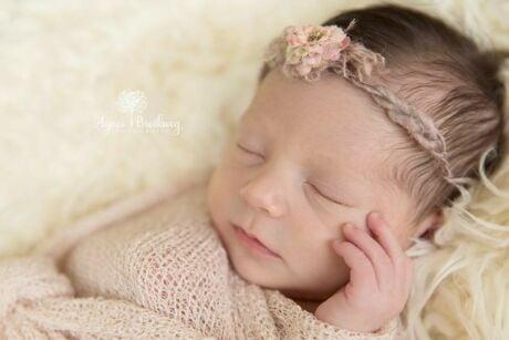 Beste newborn fotografe van Nederland