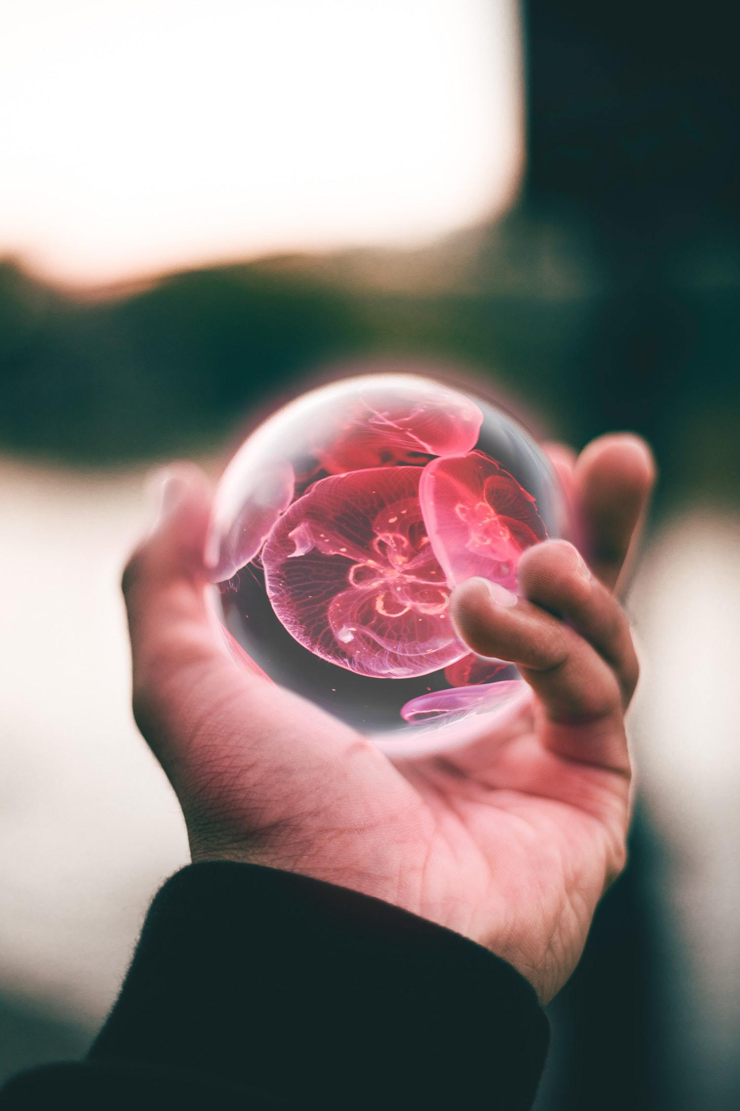 lensball creatief cadeau
