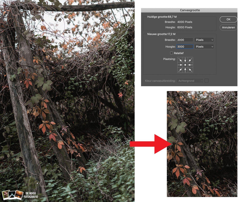 canvasgrootte photoshop verschil