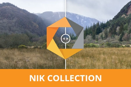 Online Cursus NIK Collection