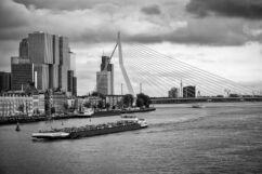 Fotoposter Rotterdam - Erasmusbrug in Zwart-Wit