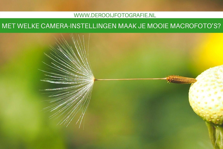 camera instellingen voor mooiere macro foto's