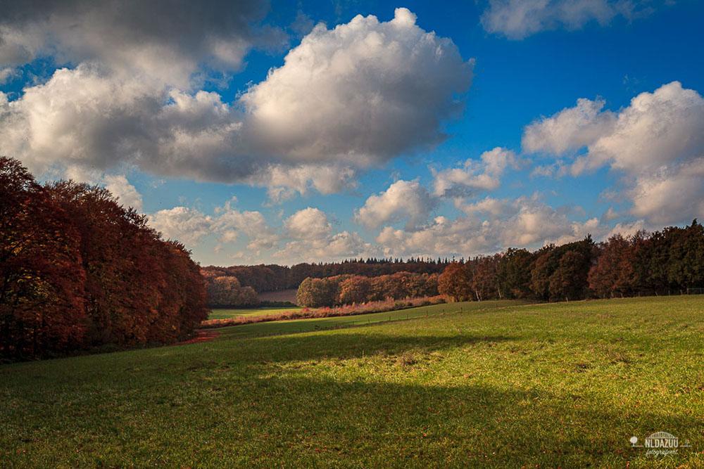 Cursus Landschapsfotografie in het herfstseizoen