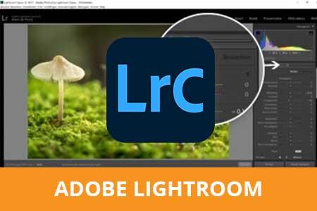 online cursus adobe lightroom DRF