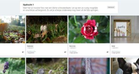 foto community opleiding beoordelingen