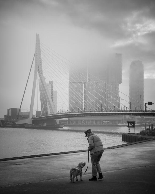 Foto van Erasmusbrug in de mist