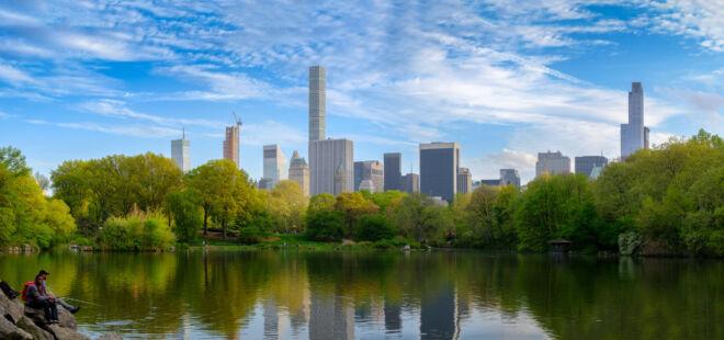 Mooiste foto Central Park New York