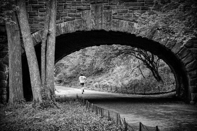 Mooiste foto's Central Park New York
