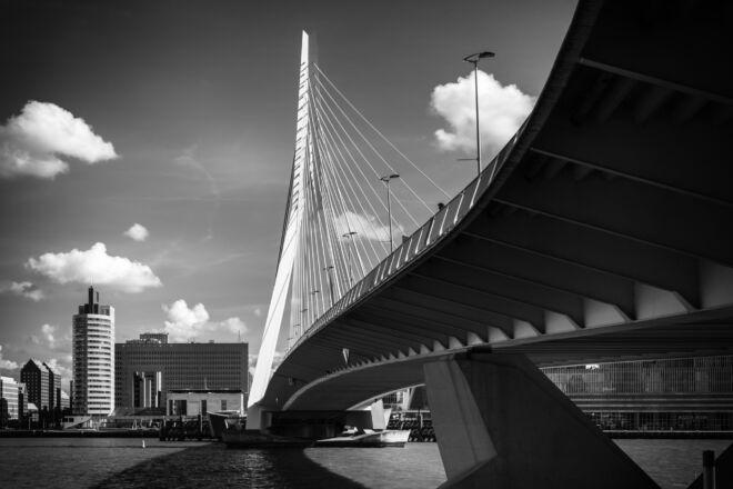 Mooiste foto Erasmusbrug in Rotterdam (zwart-wit)