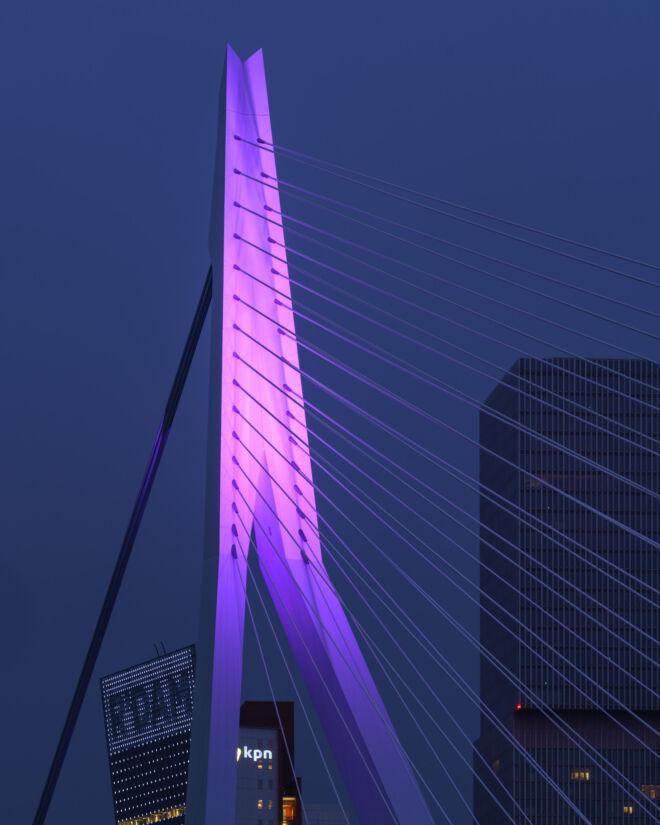 Paarse Erasmusbrug in Rotterdam