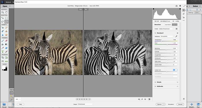 Zwart-wit fotobewerking in Photoshop Elements 2021