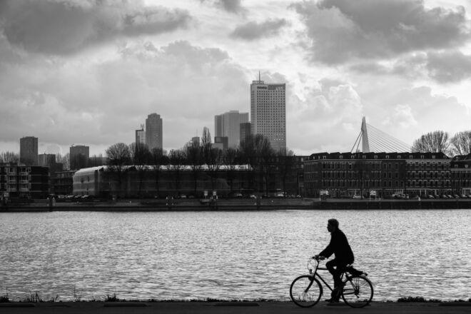 Foto skyline Rotterdam vanaf de Esch