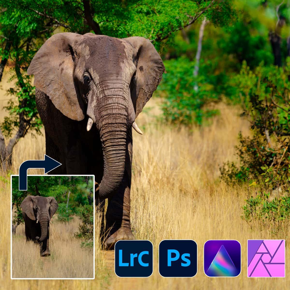 1200x1200 fb ad fotobewerkings 3 daagse ad4