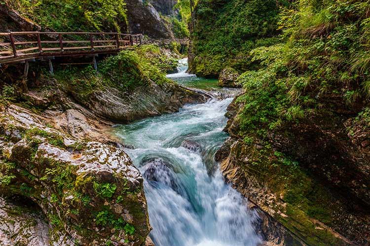 Natuurfotografie fotoreis - Slovenië