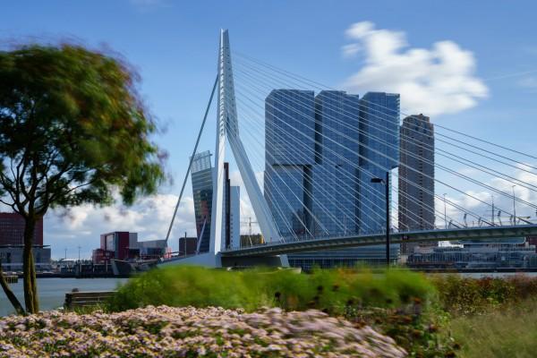 197. Erasmusbrug en De Rotterdan (lange sluitertijd)